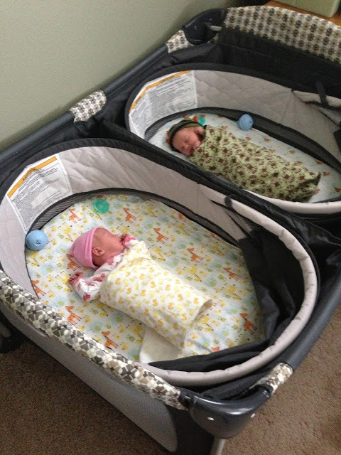 bassinet for twins